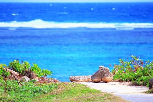 ハワイアンウォーターをネット契約したい