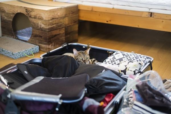 逆にスーツケースを便利に開けられる